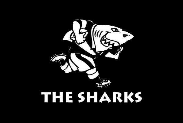 Natal Sharks Thumb